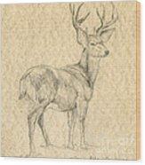 Elk Wood Print