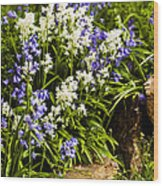 English Country Garden Wood Print