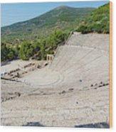 Epidaurus, Argolis, Peloponnese Wood Print