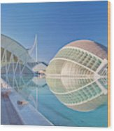 Europe, Spain, Valencia, City Of Arts Wood Print