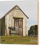 Falkland Island Farm Wood Print
