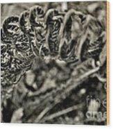 Fall 2013 Wood Print