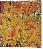 Fall Colors 2014-3 Wood Print