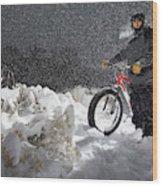 Fat Tire Bike Wood Print