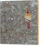 Female Cardinal In Snow Wood Print