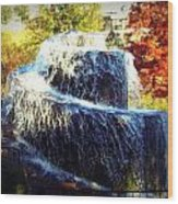Finlay Park Fountain 3 Wood Print