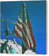 Flag Day Reflection Wood Print by Newel Hunter