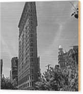 Flatiron Building Manhattan  Wood Print