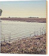 Flooded Farmland Wood Print