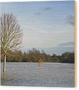 Flooded Field In Rural Essex Wood Print
