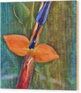 Floral Contentment Wood Print