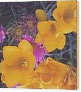 Floral Wonder Wood Print by Robert Bray