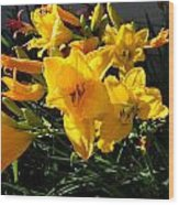 Flower In Idaho Falls Wood Print