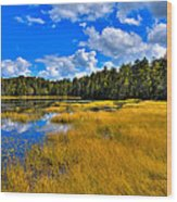 Fly Pond In The Adirondacks Wood Print by David Patterson