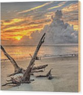 Folly Beach Driftwood Wood Print