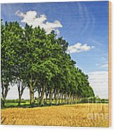French Country Road Wood Print