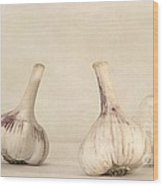Fresh Garlic Wood Print by Priska Wettstein