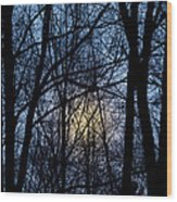 Frosted Winter Moon Wood Print