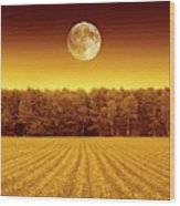 Full Moon Over A Field Wood Print