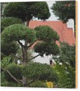 Garden Landscape - Topiary Wood Print