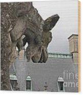 Gargoyles On Roof Of Biltmore Estate Wood Print
