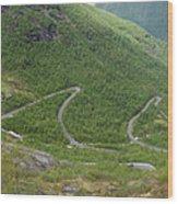 Gaularfjell Panorama Wood Print