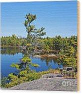 Georgian Bay Landscape Wood Print