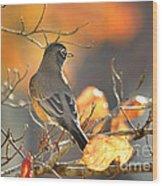 Glowing Robin Wood Print