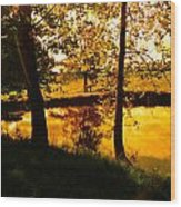 Golden Pond 3 Wood Print