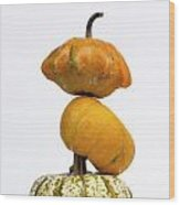 Gourds And Pumpkins Wood Print