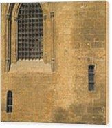 Granada Cathedral Wood Print