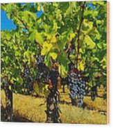 Grapes On The Vine Wood Print by Jeff Swan