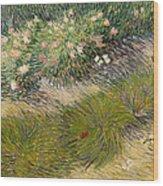 Grass And Butterflies Wood Print