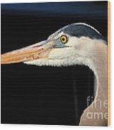 Great Blue Heron Profile Wood Print