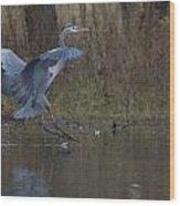 Great Blue Water Landing Wood Print
