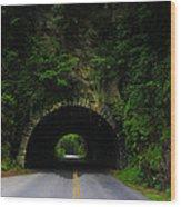 Great Smoky Mountains Wood Print