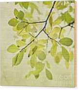 Green Foliage Series Wood Print