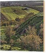 Green Valley  Wood Print