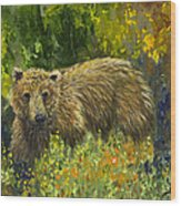 Grizzly Study 2 Wood Print