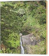 Hana Waterfall Wood Print by Jenna Szerlag