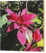 Hawaiiana 5 Wood Print