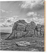 Haytor Rock Wood Print