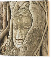 Head Of Buddha Ayutthaya Thailand Wood Print by Colin and Linda McKie
