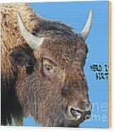 Herd Its Your Birthday Wood Print