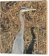 Heron In Shadow Wood Print