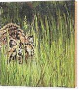 Hide And Seek Wood Print