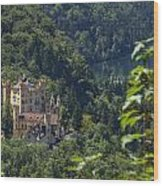 Hohenschwangau  Wood Print