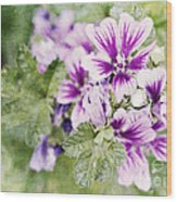 Hollyhocks Wood Print