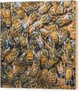 Honey Bees In Hive Wood Print