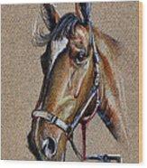 Horse Face - Drawing  Wood Print